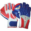 KD Tyro 3000 Indoor Cricket WK Gloves