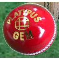 Platypus Gem Leather 2 Piece Cricket Ball