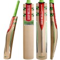 Gray Nicolls Velocity XL 1500 Cricket Bat